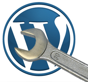 WordPress plugin laten ontwikkelen?